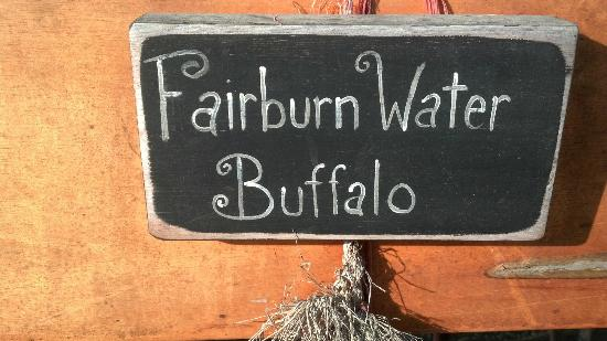 Fairburn Farmstay and Guesthouse: Sign