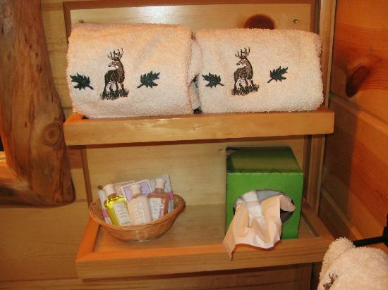 Frontier Cabins Motel: Nice touches