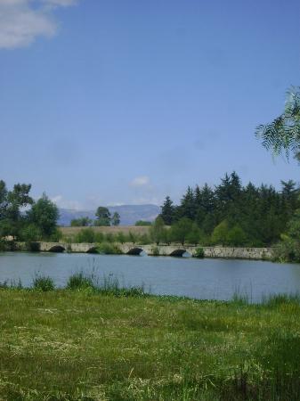 Centro Ecoturistico del Lago: Vista a la presa