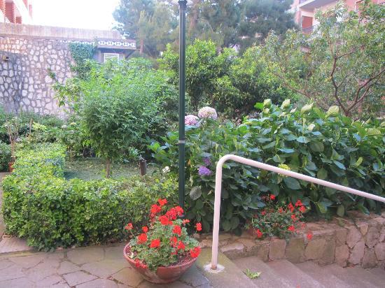 Cesare Augusto: more gardens