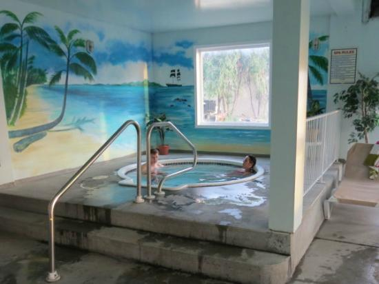 Country View Motor Inn: Motel's hot tub
