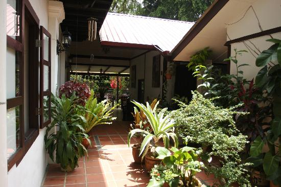 Basaga Holiday Residences: Little courtyard