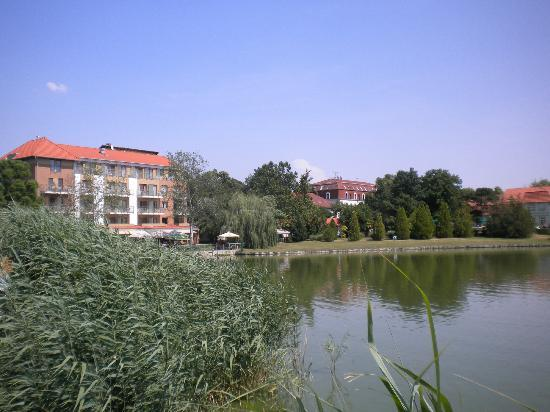 Hotel Corvus Aqua: озеро перед отелем