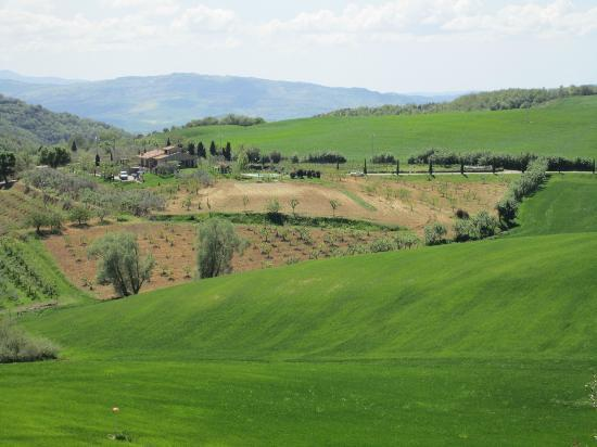 Villa Poggiano: Nearby view