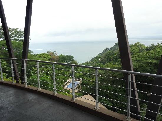 The Preserve at Los Altos: Balcony & View