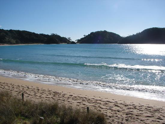 Quality Hotel Oceans Tutukaka: Matapouri Bay 5 minutes away