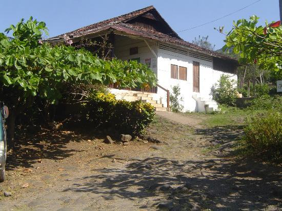 Finca Magdalena : the hostel