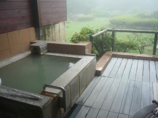 Hotel Green Plaza Hakone: アジアンテイストルームのお風呂