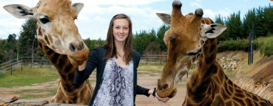 National Zoo and Aquarium: Meet and feed Giraffe on the Zooventure Tour and daily Encounters