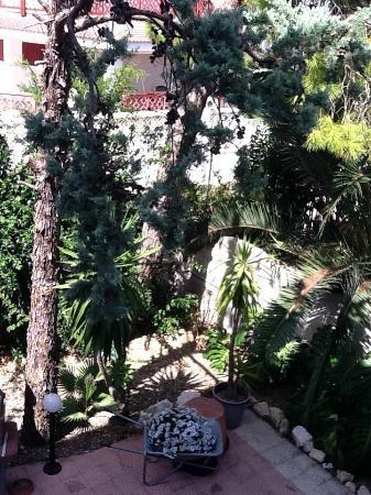 B&B Albergo Lamanna: giardini con barbecue