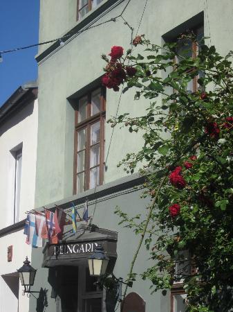 Restaurant & Hotel Wismar: Hotel Reingard