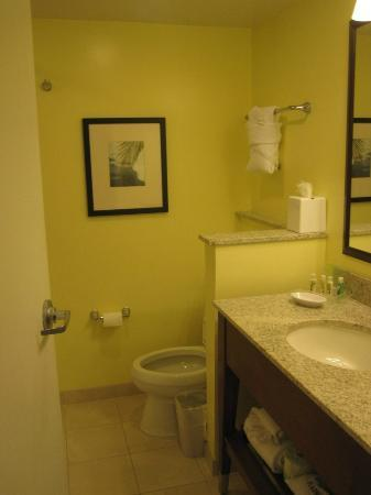 Holiday Inn Orlando – Disney Springs Area: bathroom