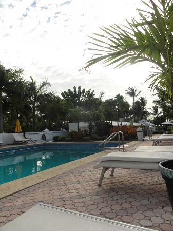Marseilles Hotel: Pool