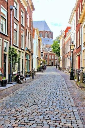 Leiden, The Netherlands: pieterskerk op de achtergrond