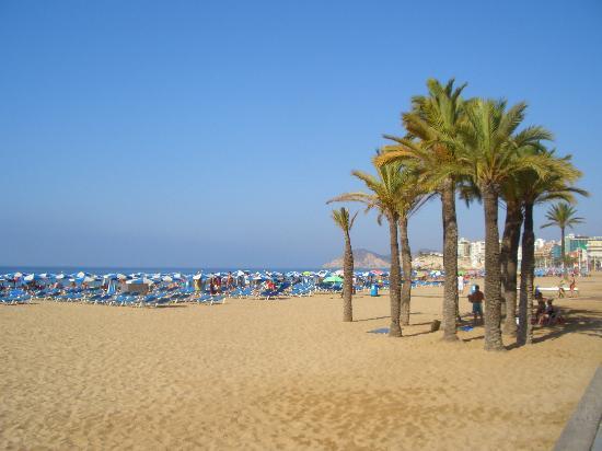 Servigroup Venus: Playa de Levante am Morgen