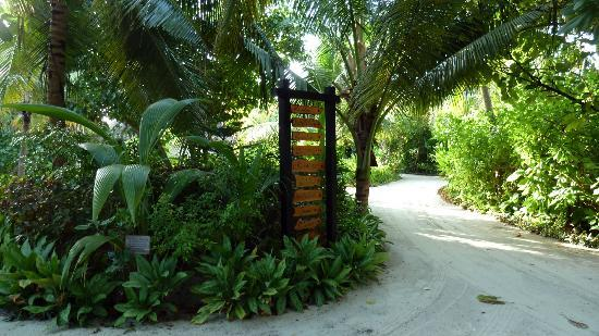 The Sun Siyam Iru Fushi Maldives: tropical hotel grounds