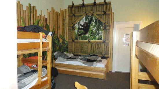 Kangaroo-Stop Hostel: Dorm