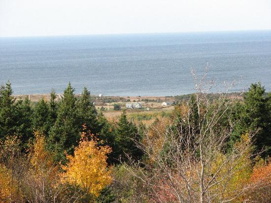 Acres and Ocean Cottage : Looking from hillside to ocean