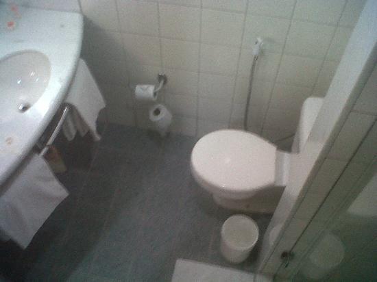 Hotel ibis Rio de Janeiro Centro: The washroom