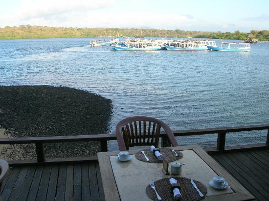 Mimpi Resort Menjangan: view from restaurant