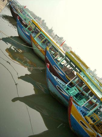 Hoi An Locas Private Day Tours: The boats are watching