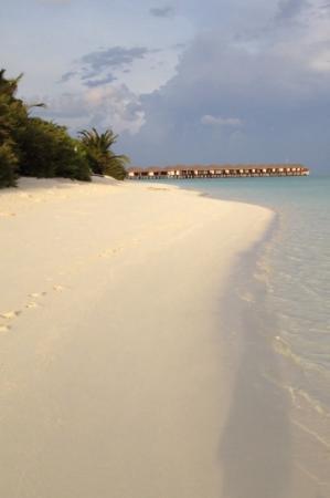 Velassaru Maldives : уезжаем...из Рая