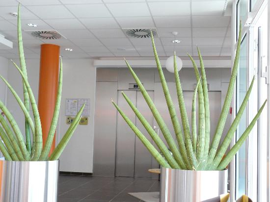 Ibis Budget Luxembourg Sud : Lobby