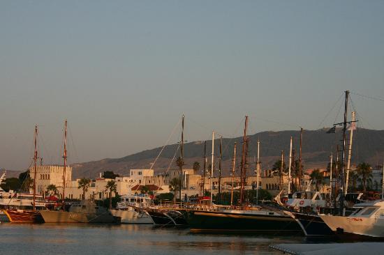 Apollon Hotel: Kos marina