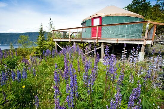 Soule Creek Lodge: Tatoosh Yurt Exterior