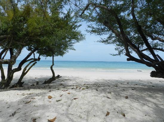 โรงแรมปารดี: spiaggia vista dal ns deck