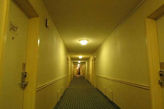 Howard Johnson Plaza Hotel Fredericton: hall way