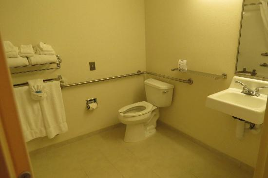 Microtel Inn & Suites by Wyndham Dover: bathroom