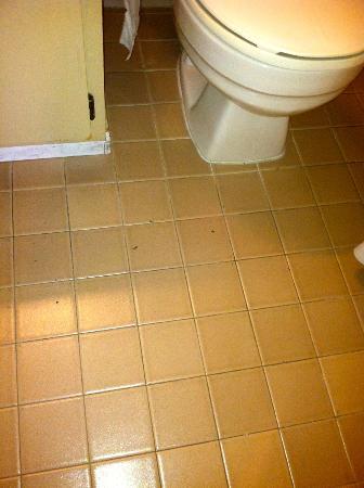 Ramada Carlsbad: bathroom