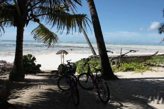 Paradise Beach Bungalows : View from the lodge (btw, cycling on the beach is great!)
