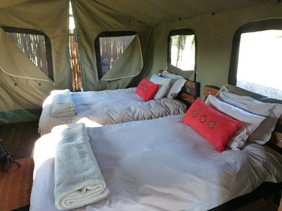 Shindzela Tented Safari Camp: Comfortable and cozy