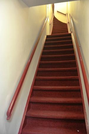 Amigo Budget Hostel: Stairs to get to the rooms