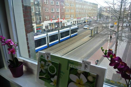 Amigo Budget Hostel : View from the reception - tram stop nearby