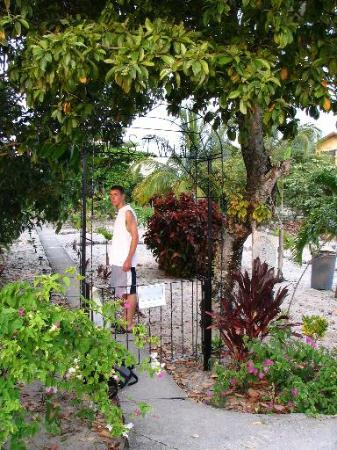 Westwind Hotel on the Beach: Garden entrance