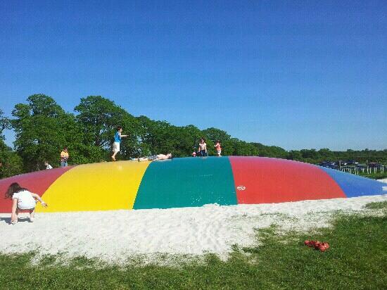 Briarlands Farm: Bouncing Pillow fun