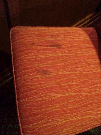 Plaza Hotel: stains on a chair in the breakfast area.