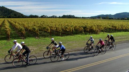 Yountville, Californien: Photo by Napa Valley Bike Tours