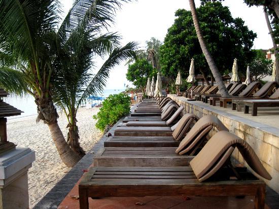 Aloha Resort : Laze on the maze :)