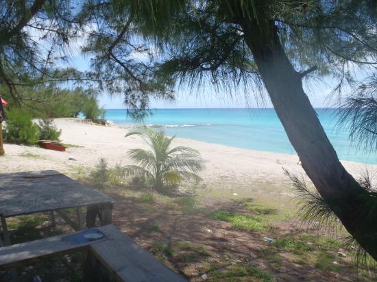 Bimini Big Game Club Resort & Marina: View from Sherry's porch