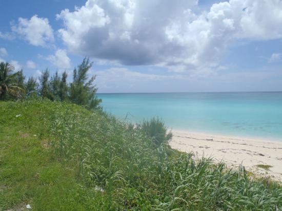 Bimini Big Game Club Resort & Marina: View from Sherry's