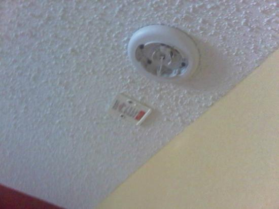 Ramada East Orange: Close up of No Fire Alarm in Room 730 of the Ramada Inn East Orange = No Refund