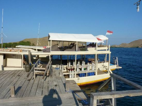 Komodo Resort & Diving Club: hasty last-minute dive boat snap