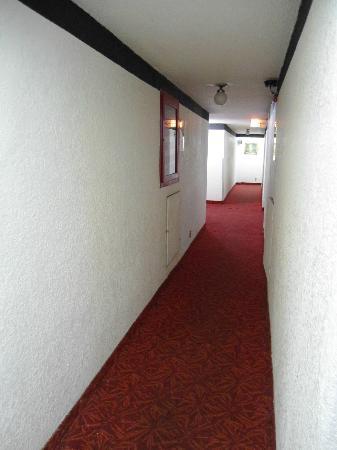 Reforma Avenue Hotel: Hallway