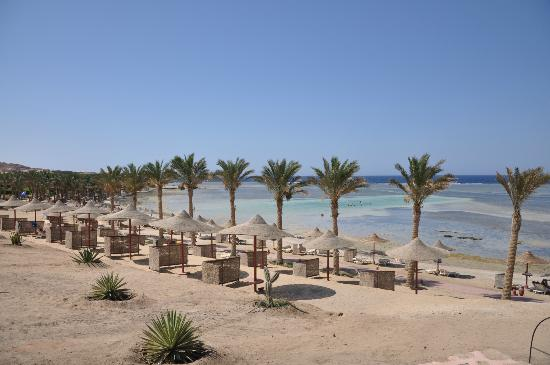 Eden Village Habiba Beach: Il villaggio