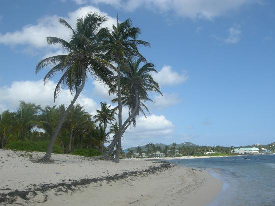 The Palms at Pelican Cove: beach
