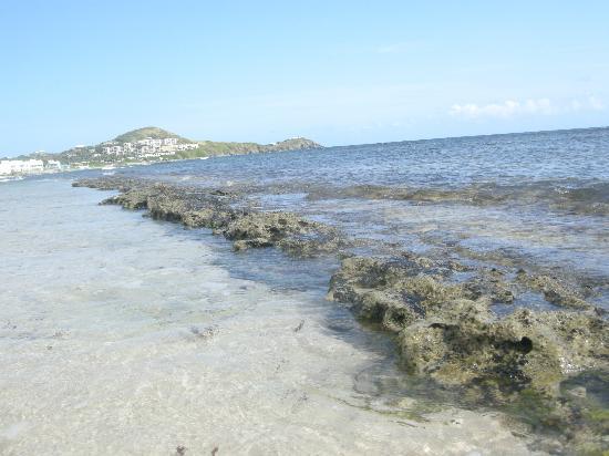 ذا بالمز آت بيليكان كوف: the beach 